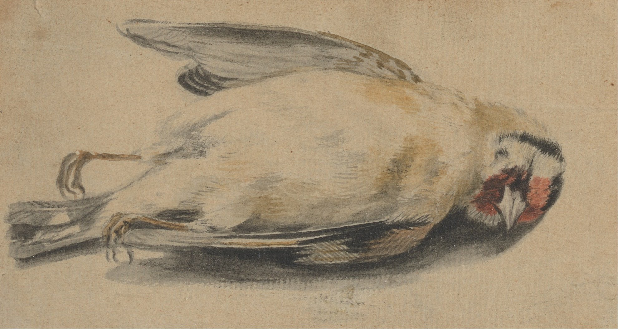 Paul_Sandby_-_A_Dead_Bird_-_Google_Art_Project
